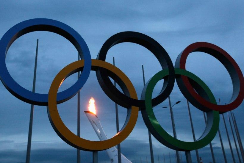 Kihlveoblogi: kellele panustada ja kas Venemaa on kodustel olümpiamängudel räigelt ülehinnatud?