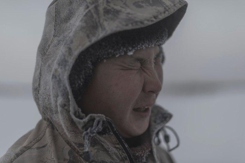 JÄÄTUNUD GALERII: vaata pilte maailma ühest külmemast paigast!