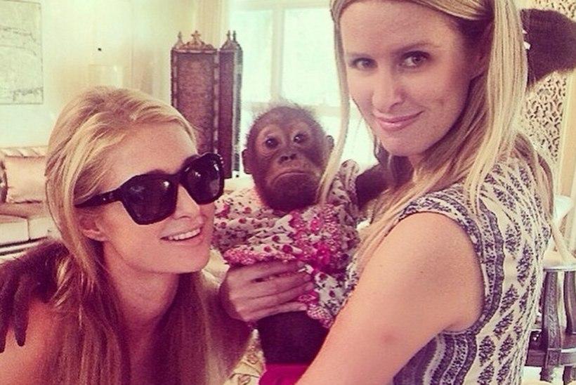 NUNNUD FOTOD: õed Hiltonid poseerisid Araabia Ühendemiraatides pisikeste loomaaialoomadega