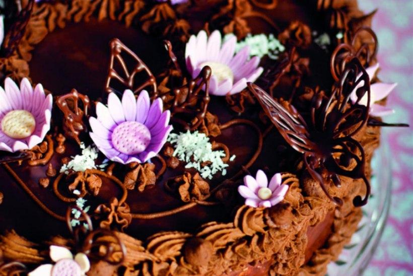 Šokolaaditort Talvi moodi