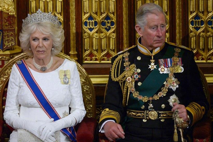 Kas Camilla pruukis kokaiini?