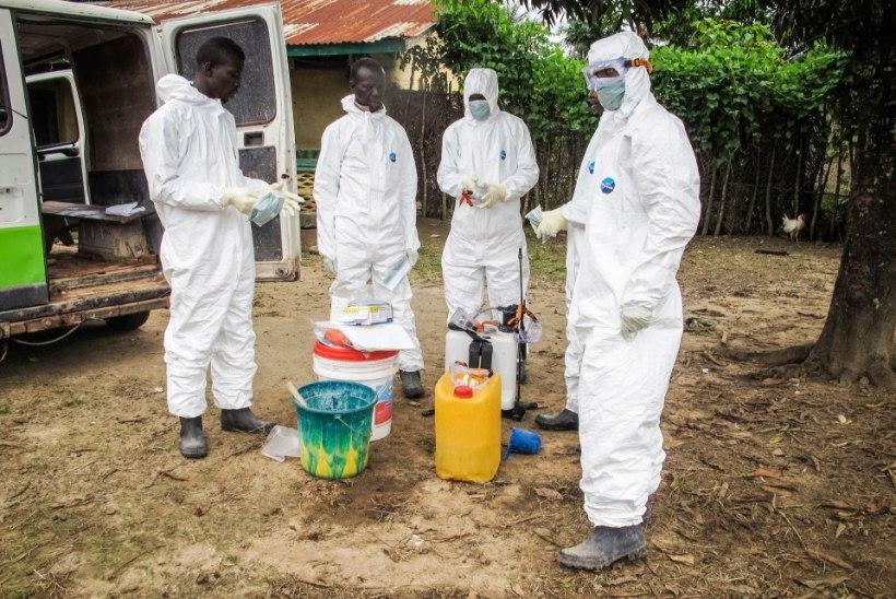 WHO: ebola-vastane seerum on valmis mõne nädala pärast