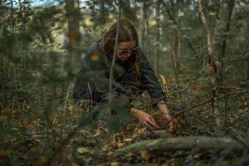 SEENELKÄIK: Birgit Õigemeel viis laulusaate osalejad metsa