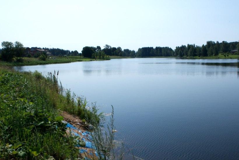Viljandimaal leiti paisjärvest uppunud naine