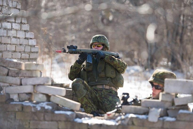 Õppus Teraskilp hindab Scoutspataljoni valmisolekut