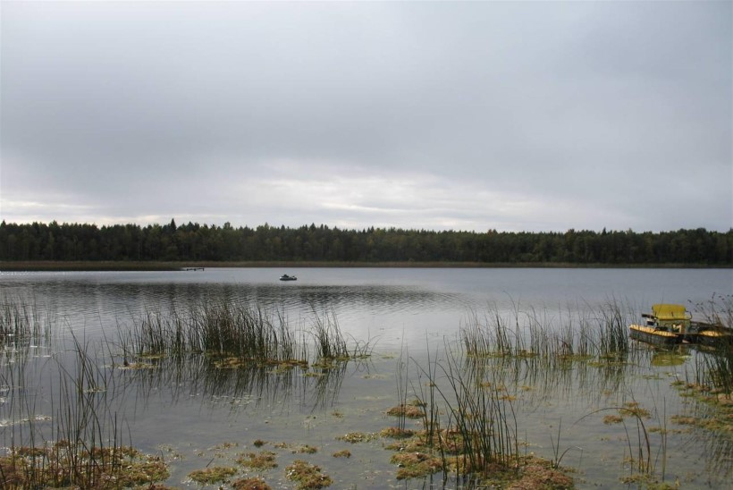 Väinjärv – selge vesi, suured kalad ja allveekütid