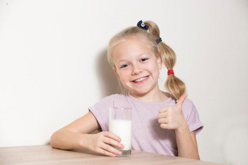 Piim: tervisele endiselt kasulik või enam mitte?