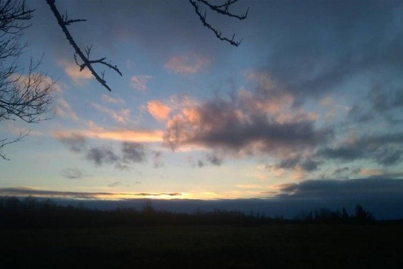Vigala jõel, kaamos kaob - kaamos tuleb, 08. november 2014