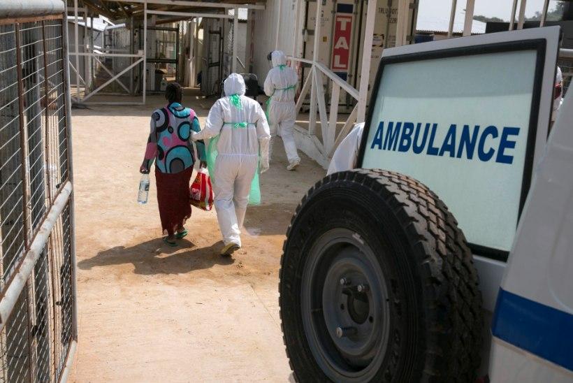 Eesti ekspert sõidab ebola piirkonda humanitaarmissioonile