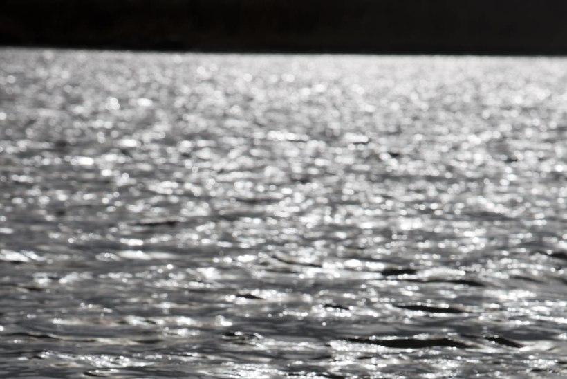 Ariste lahe reostuse likvideerimist toetatakse 207 815 euroga