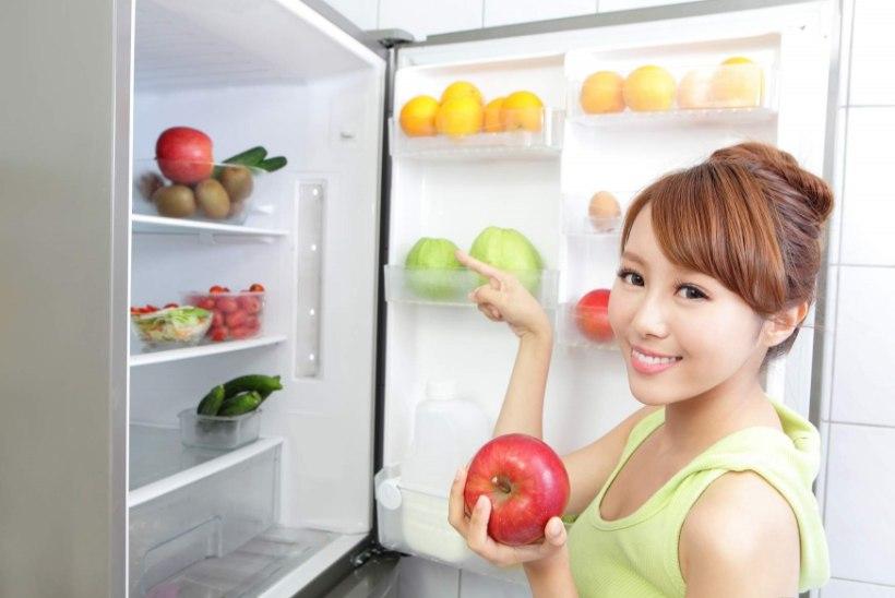 Köögivili sõbrustagu külmkapiga