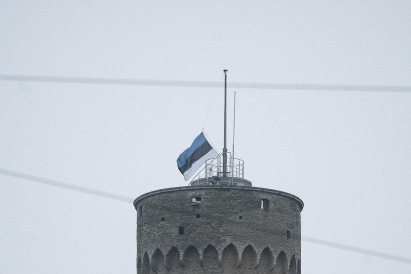 Pika Hermanni lipp langes omatahtsi poolde vardasse