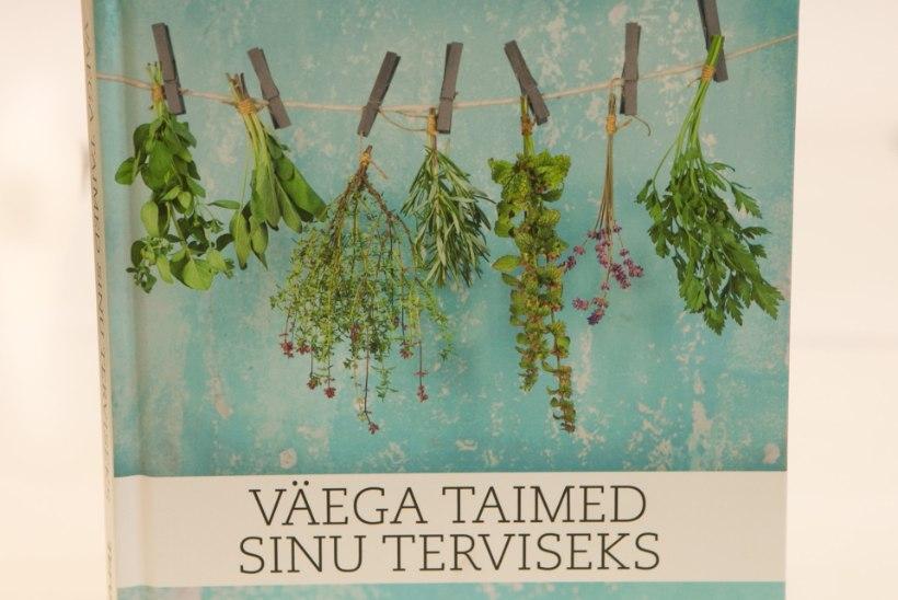 Tervis ja mõnus meel kodumaistest väega taimedest