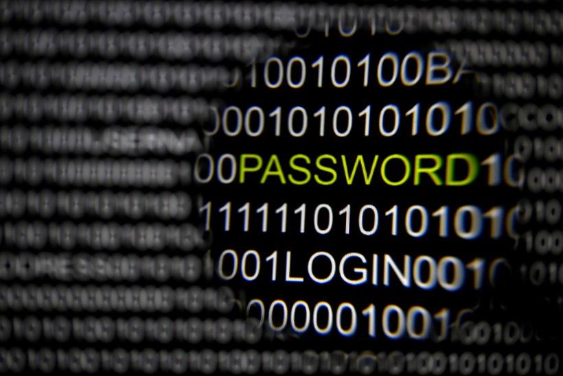 Euroopa ja USA arvutivõrke tabas massiivne küberrünnak