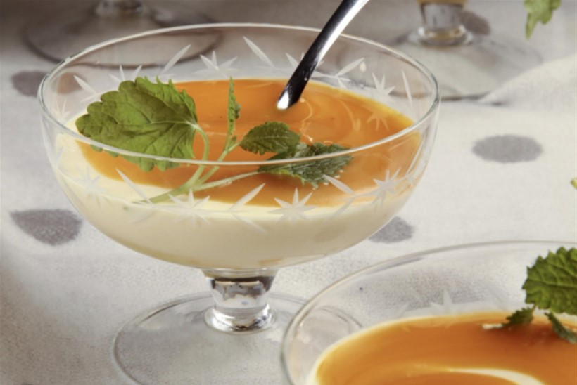 Jogurtikreem kookose ja mangoga