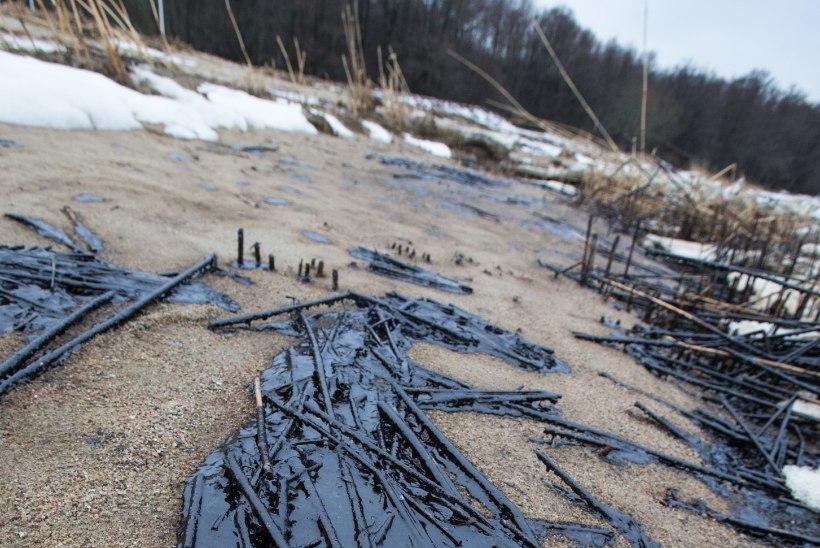 Murastes alustati rannikureostuse likvideerimist