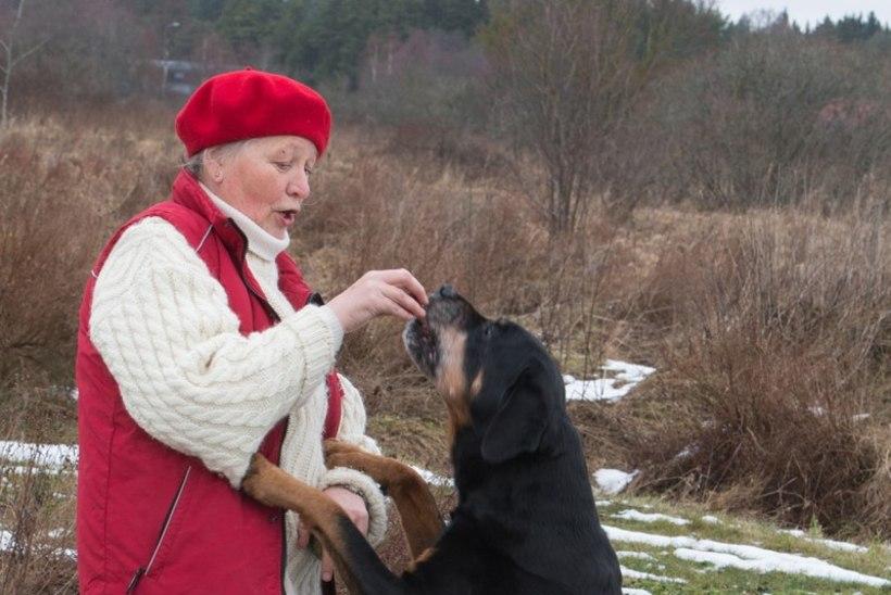 Koertekoolitaja: «Inimestel on vähe aega isegi oma laste jaoks, koertest rääkimata.»