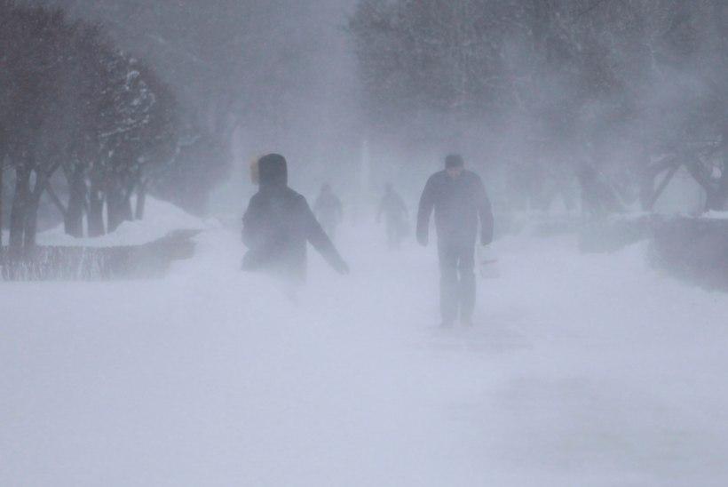 Sloveeniat kimbutab tugev lumesadu: elektrita on 90 000 inimest!