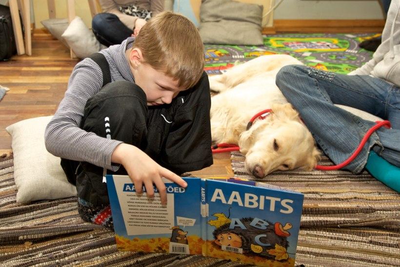 Tartu raamatukogus alustasid tööd lugemiskoerad