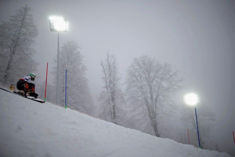 Paraolümpia slaalom: võitja diskvalifitseeriti valestardi tõttu