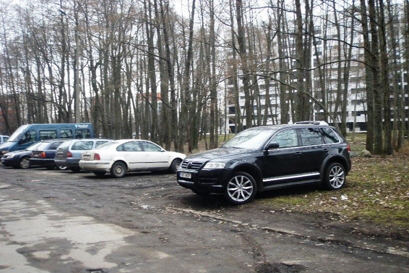 Mupo võtab erilise tähelepanu alla haljasalale parkijad