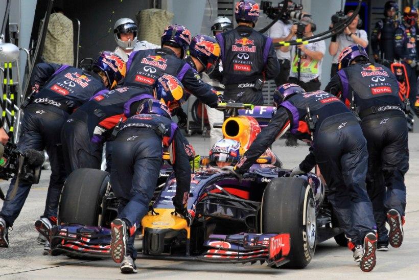 Red Bulli vormelitel on austraallaste vastu allergia