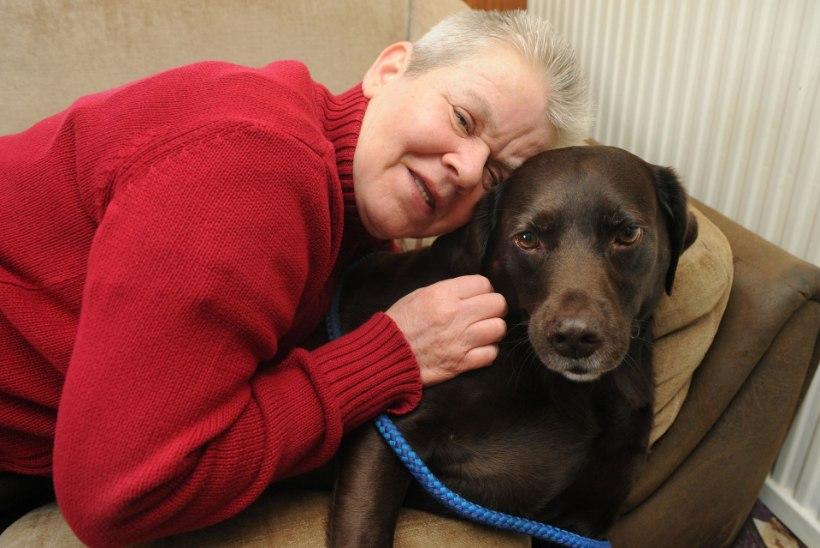 SÜDAMLIKUD FOTOD: koer päästis oma 61-aastase omaniku lämbumissurmast