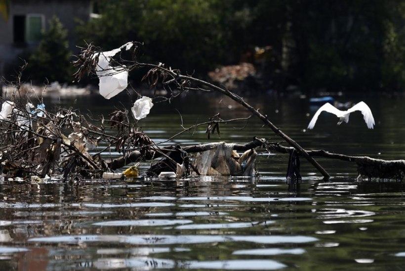 Rio olümpialahe merevesi on nii must, et purjetajad ei taha sinna minna