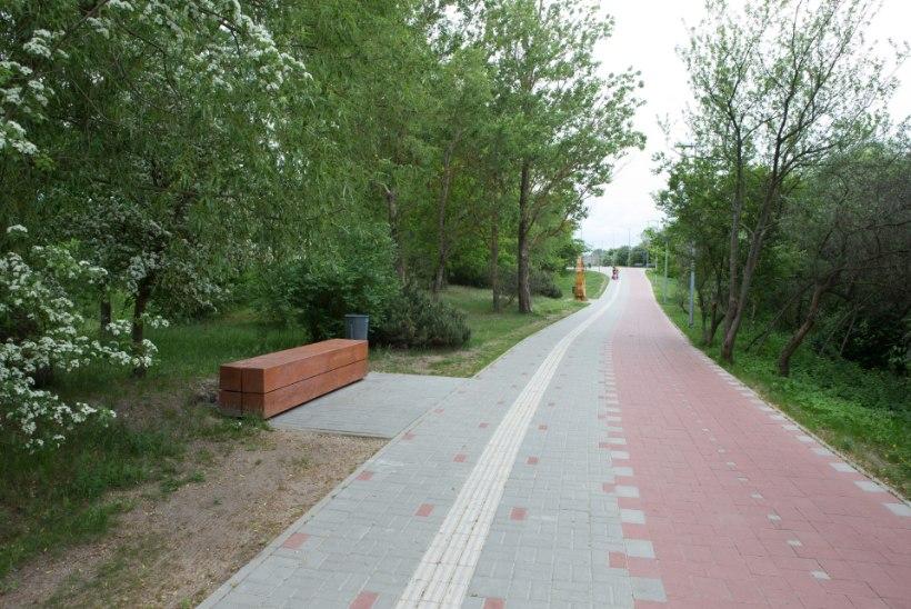 GALERII: Läti võõrustab Eestit mereäärsel küngasväljakul