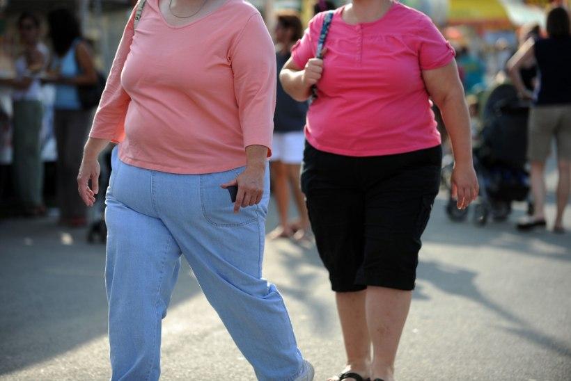 OECD: rasvumise ja majanduskriisi vahel on seos