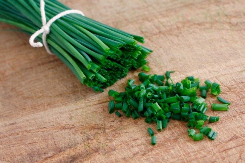 9 kõige tervislikumat maitsetaime