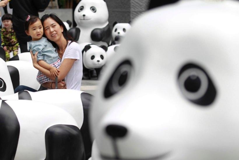 GALERII: Shanghais saab näha bambusest tehtud pandakarusid