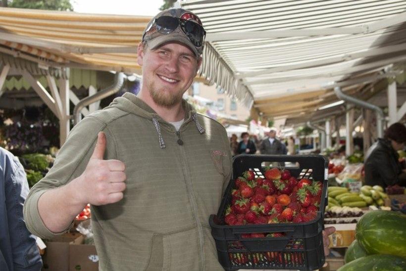 Kuidas teha vahet Eesti ja Poola maasikal?