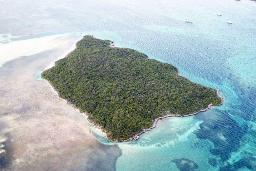 STAARIDE MAGUS ELU: 8 kuulsust, kes omavad isiklikku saart!