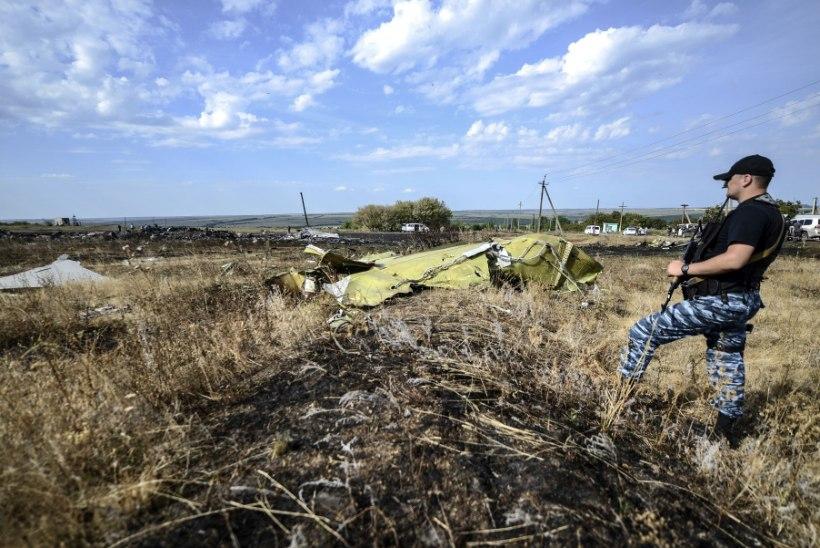 Mitmed MH17 reisijate surnukehad ja kehaosad vedelevad siiani õnnetuskohal