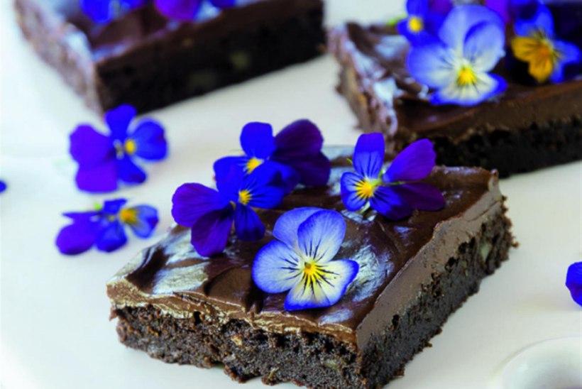 Suvikõrvitsa-šokolaadiruudud Kreeka pähklitega