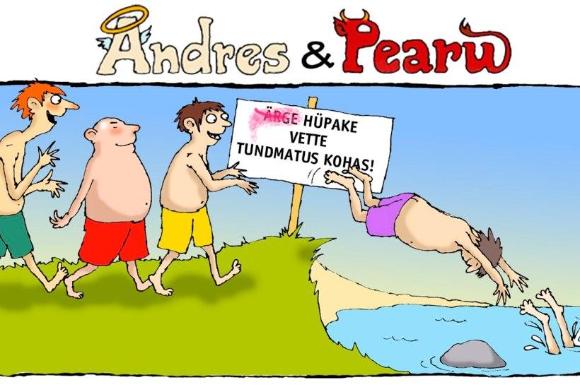 Andres ja Pearu: lollus ei hüüa tulles, enne hüppamist mõelge!