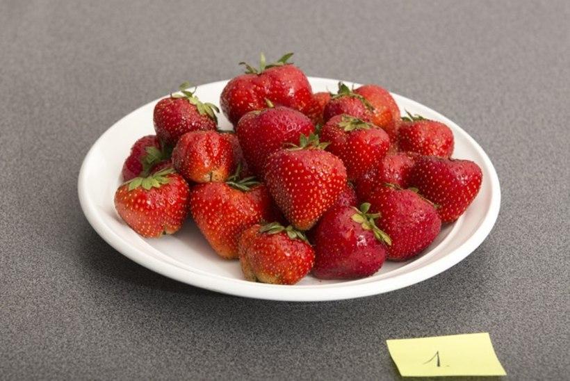 Parimad maasikad on kodumaised