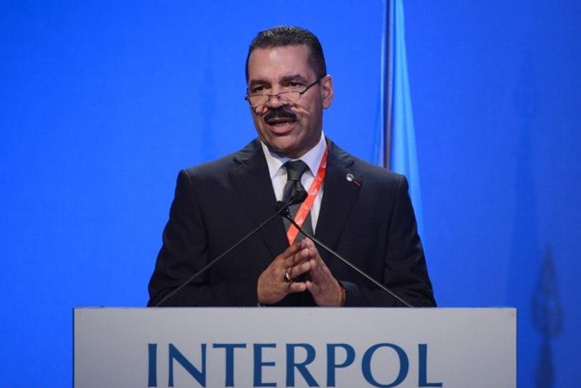 Interpol nõuab Foley mõrvale ülemaailmset vastust