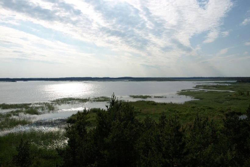 Tartu Ülikooli teadlane avastas, et maailmas on järvesid kolm korda vähem kui arvati