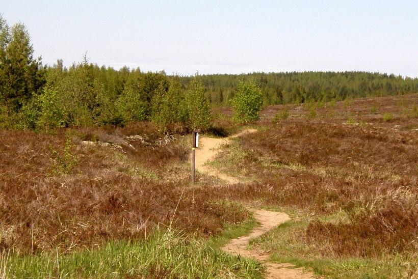 Avasta Eestimaad: Põhja-Kõrvemaal kuuled ehk kõige erakordsemat loodusheli
