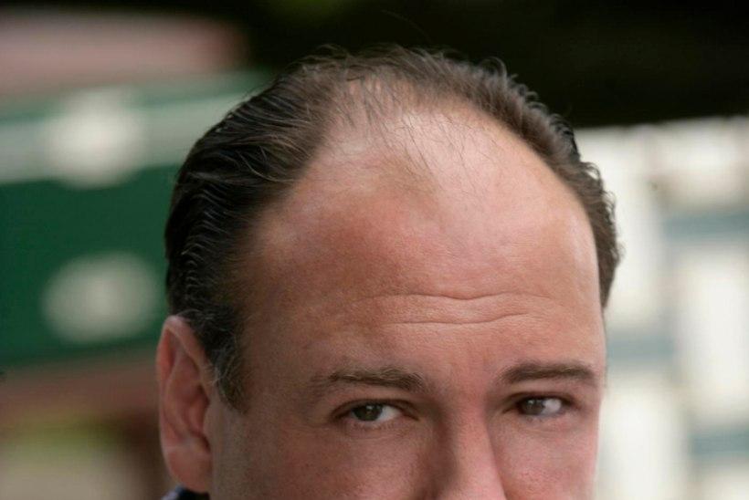 Tony Soprano saatus teada?