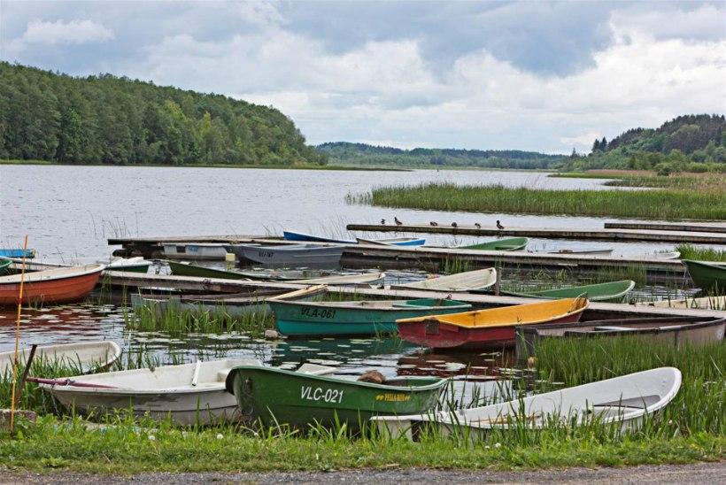 Viljandi järv - priskete ahvenate paradiis