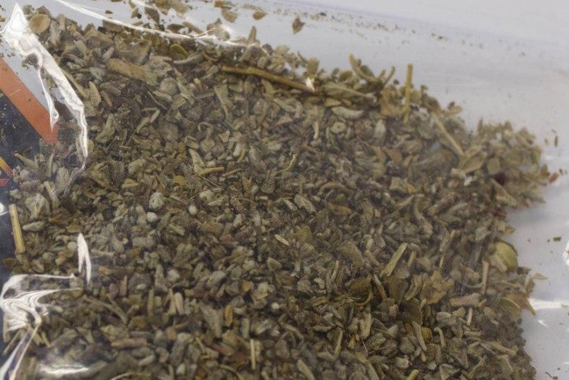 Eestis leviv sünteetiline kanep ehk spice võib ka tappa