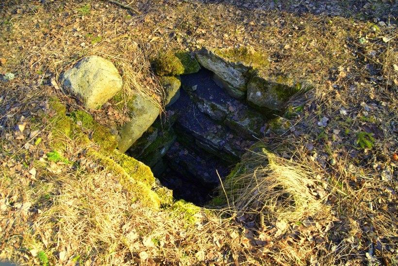 Avasta Eestimaad: Raplamaalt leiab müstilise UFO-raba