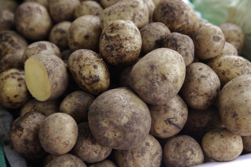 Venemaal tappis kartulikoorem kaks naist