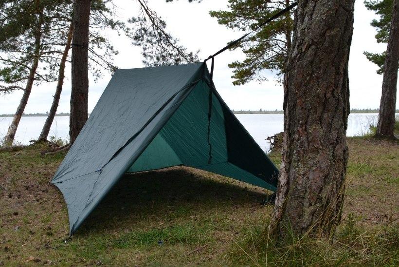 Avasta Eestimaad: sada ja seened Lääne-Eesti rabades