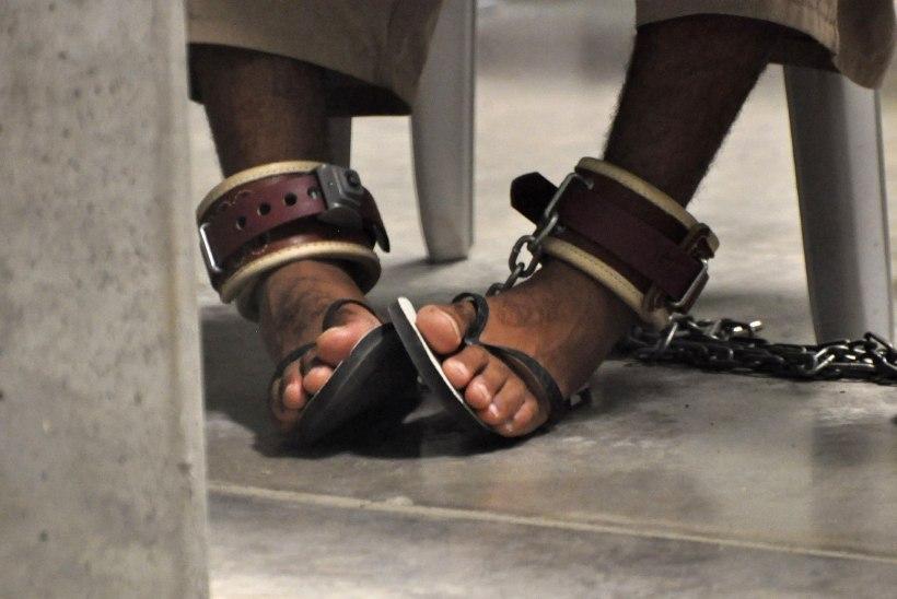 Loe, milline mees on Guantanamost Eestisse elama toodav vang!