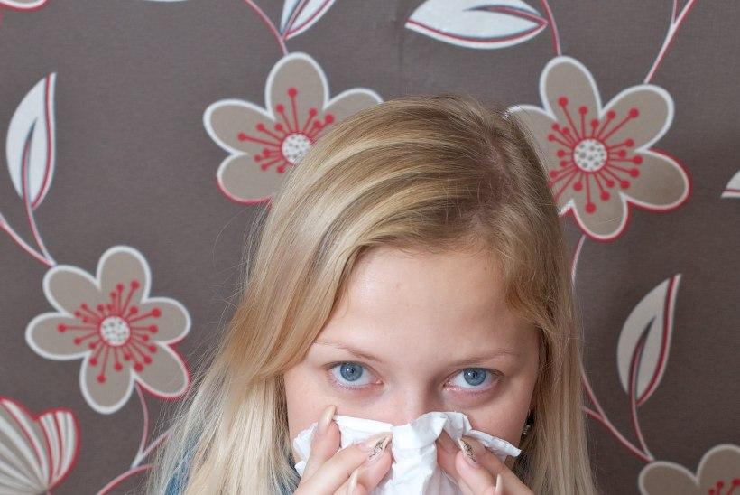 Sel hooajal on gripi tõttu haiglaravi vajanud juba 11 inimest