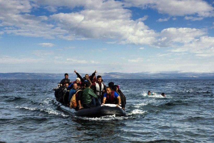 Riiklikult tähtis pagulasküsimus riigikogus – kas väike tige rahvas pakub abikätt… või mitte…